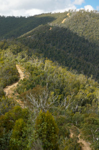 The track down to Mad Dog lookout.